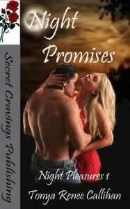 Night Promises 1